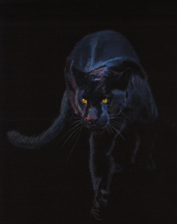 PANTHER ON BLACK CANVAS PAPER